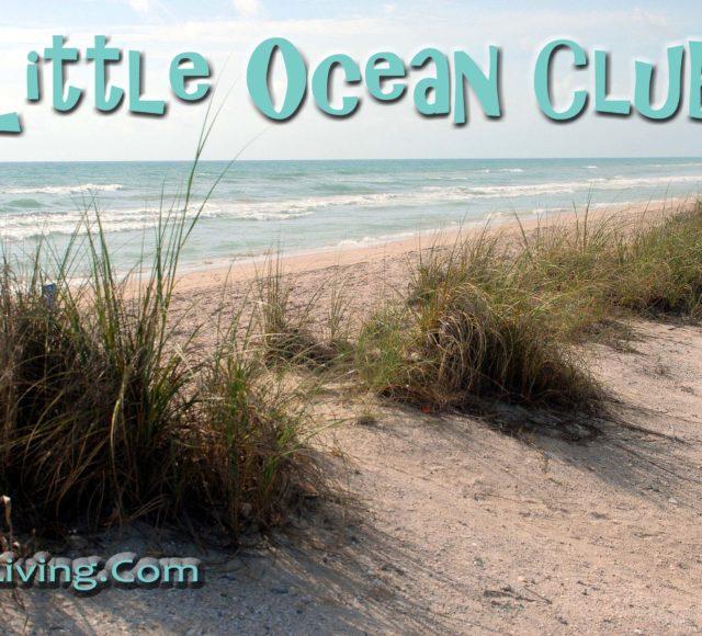 Beach dunes and ocean